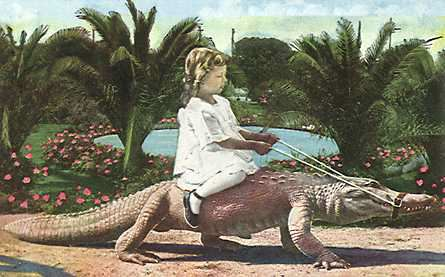 Girl Riding Alligator